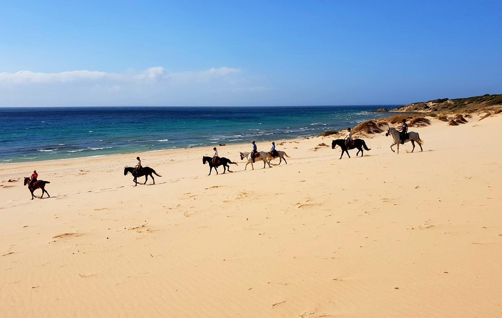 Horseback riding Tarifa